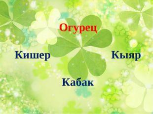 Огурец Кишер Кыяр Кабак