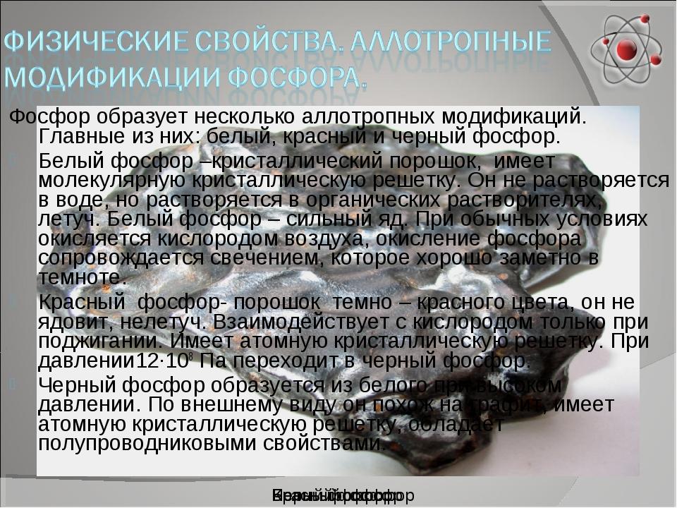 Черный фосфор Красный фосфор Белый фосфор Фосфор образует несколько аллотропн...
