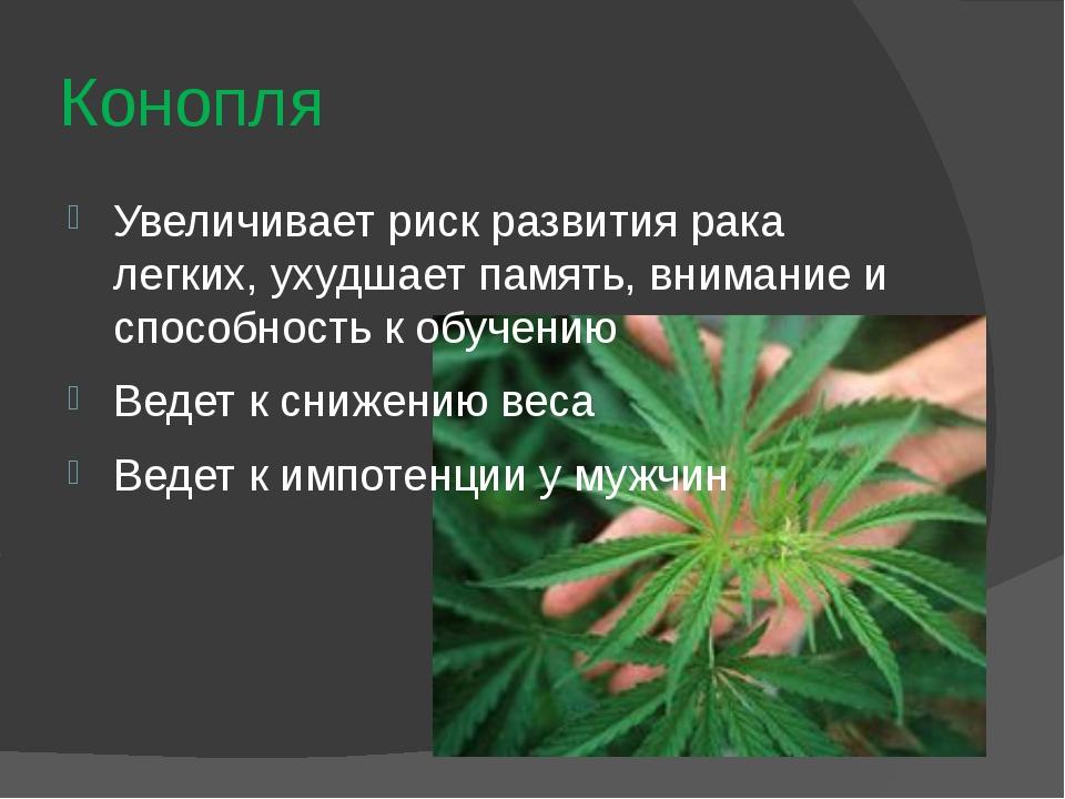 Систематическое курение марихуаны конопля в орске