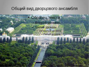 Общий вид дворцового ансамбля