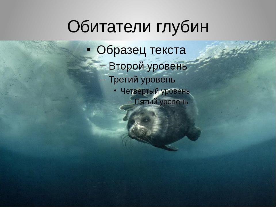 Обитатели глубин