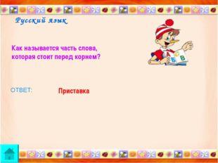 Русский язык Как называется часть слова, которая стоит перед корнем? ОТВЕТ: П