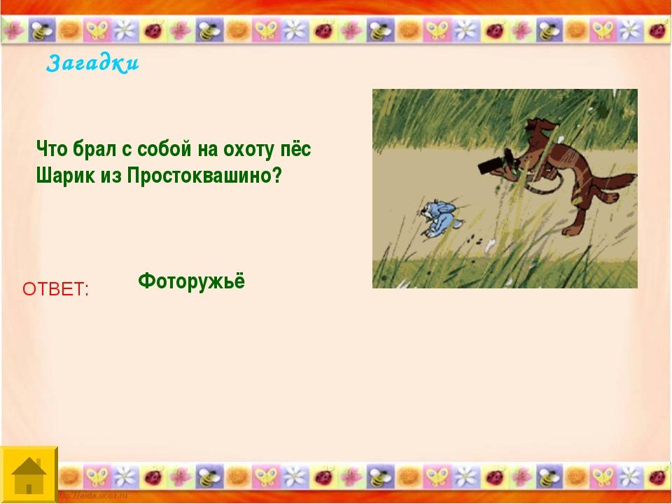 Загадки Что брал с собой на охоту пёс Шарик из Простоквашино? ОТВЕТ: Фоторужьё
