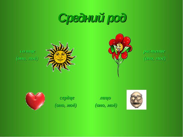 Средний род солнце (оно, моё) растение (оно, моё) сердце (оно, моё) лицо (оно...