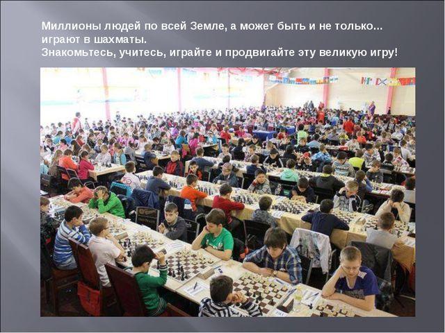 Миллионы людей по всей Земле, а может быть и не только... играют в шахматы....