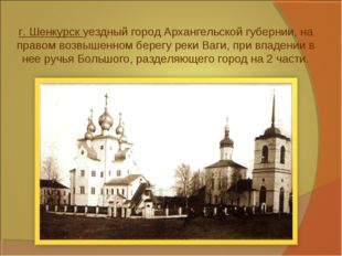 г. Шенкурск уездный город Архангельской губернии, на правом возвышенном берег