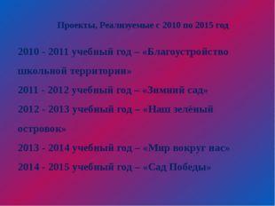 Проекты, Реализуемые с 2010 по 2015 год 2010 - 2011 учебный год – «Благоустр