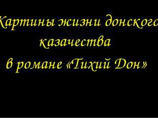 Картины жизни донского казачества в романе «Тихий Дон»