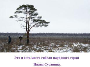 Это и есть место гибели народного героя Ивана Сусанина.