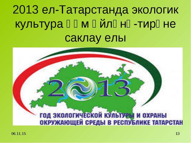2013 ел-Татарстанда экологик культура һәм әйләнә-тирәне саклау елы * *