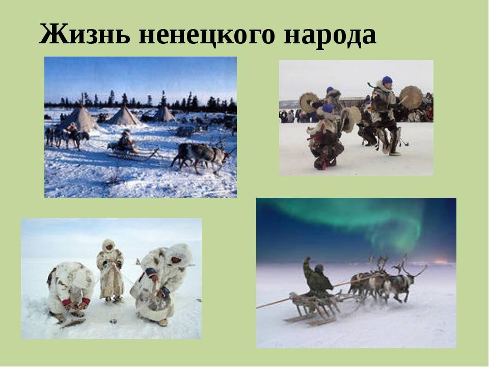 Жизнь ненецкого народа