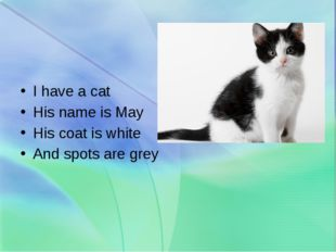 I have a cat His name is May His coat is white And spots are grey