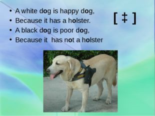 A white dog is happy dog, Because it has a holster. A black dog is poor dog,