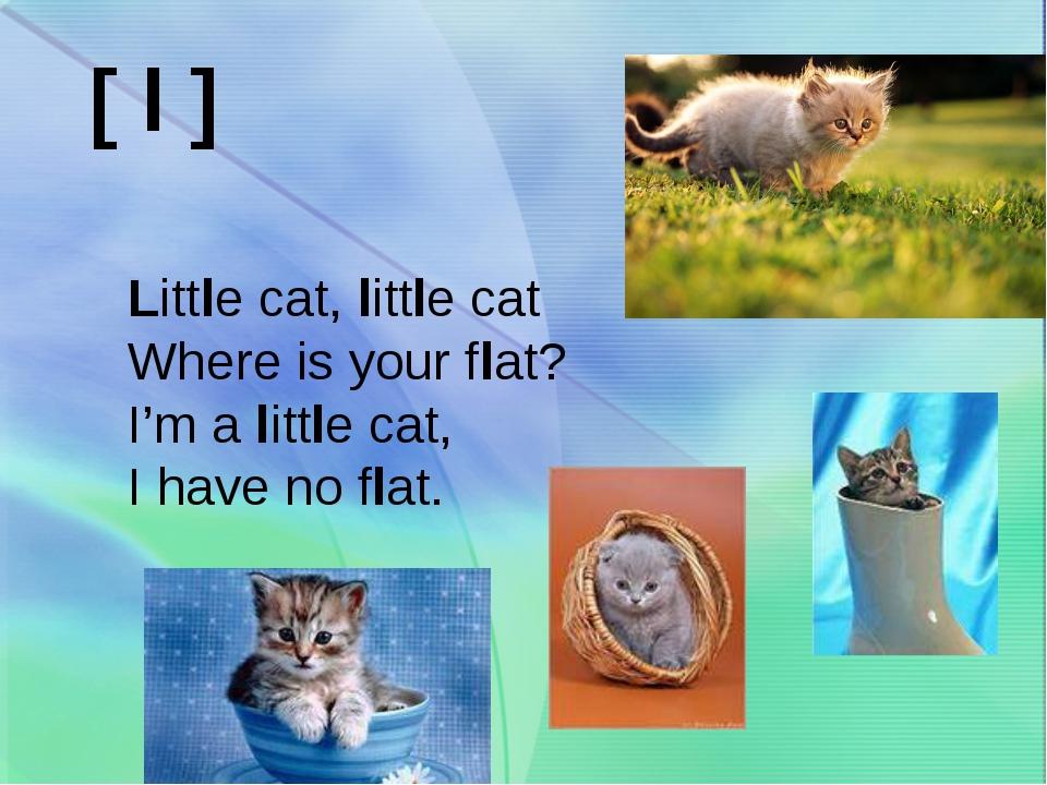 Little cat, little cat Where is your flat? I'm a little cat, I have no flat....