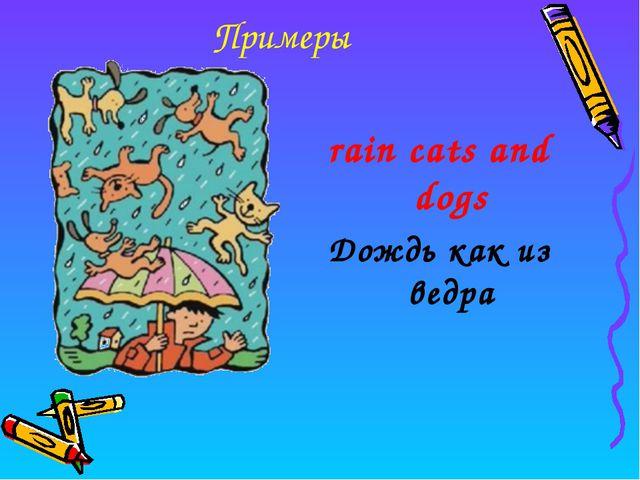 Примеры rain cats and dogs Дождь как из ведра
