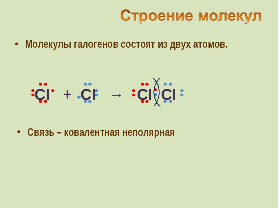 Молекулы галогенов состоят из двух атомов. Связь – ковалентная неполярная