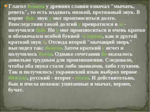 """Глагол букать у древних славян означал """"мычать, реветь"""", то есть издавать низ"""
