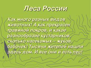 Леса России Как много разных видов животных! А как прекрасен травяной покров,