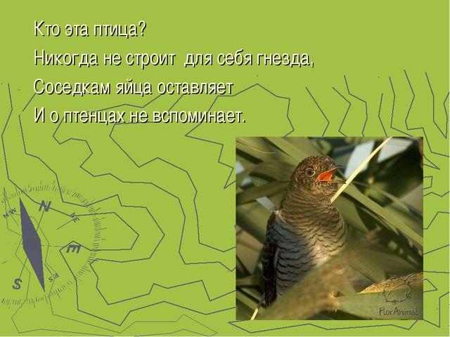 Кто эта птица? Никогда не строит для себя гнезда, Соседкам яйца оставляет И о...