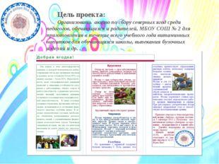 Цель проекта: Организовать акцию по сбору северных ягод среди педагогов, обу