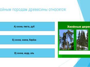 К хвойным породам древесины относятся: А) сосна, пихта, дуб Б) сосна, осина,