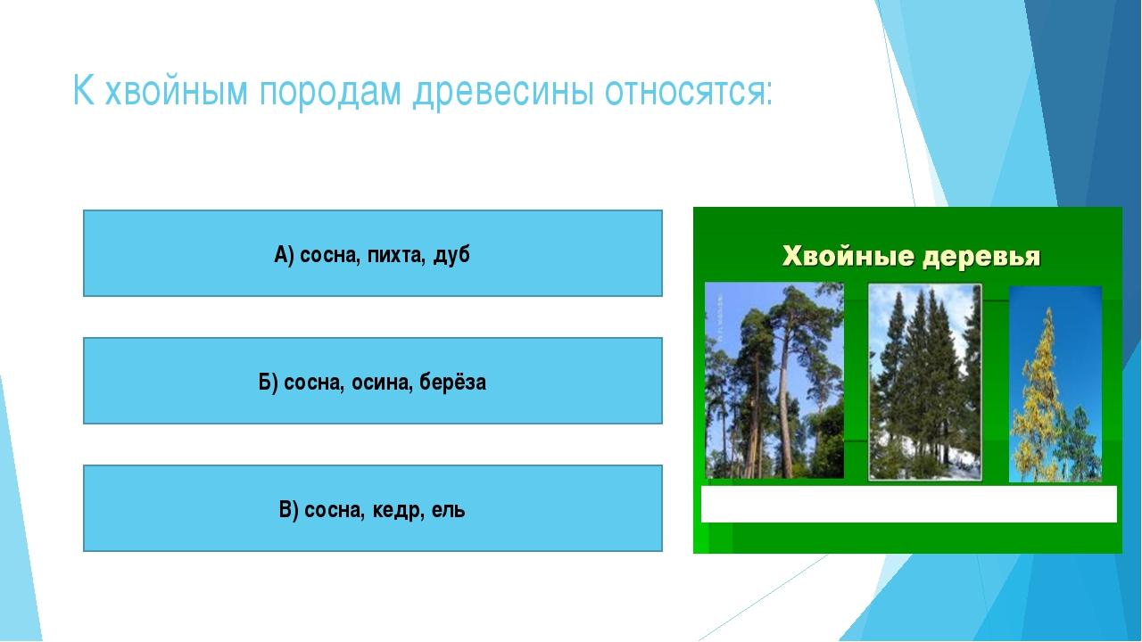 К хвойным породам древесины относятся: А) сосна, пихта, дуб Б) сосна, осина,...