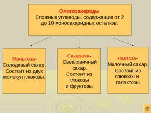 Олигосахариды Сложные углеводы, содержащие от 2 до 10 моносахаридных остатков