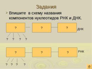 Задания Впишите в схему названия компонентов нуклеотидов РНК и ДНК. ? ? ? ? ?