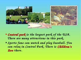 Central park is the largest park of the USA. There are many attractions in th
