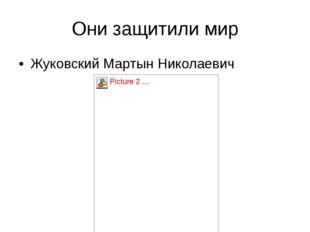 Они защитили мир Жуковский Мартын Николаевич