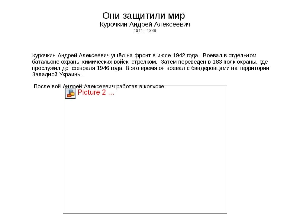 Они защитили мир Курочкин Андрей Алексеевич 1911 - 1988 Курочкин Андрей Алекс...