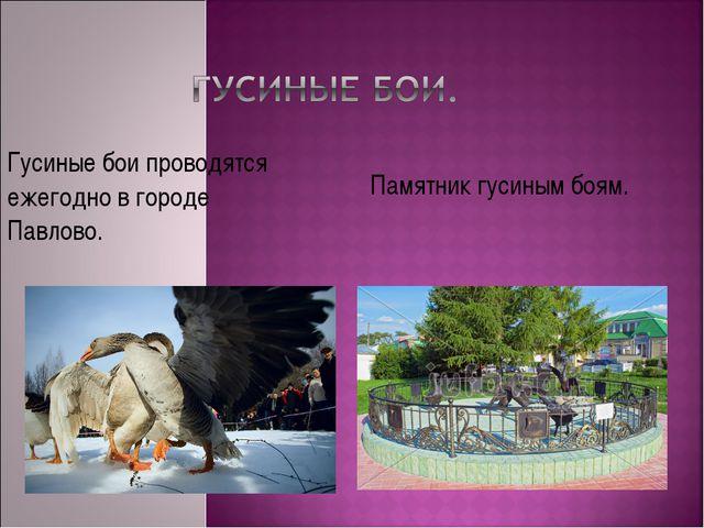 Памятник гусиным боям. Гусиные бои проводятся ежегодно в городе Павлово.