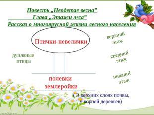 """Повесть """"Неодетая весна"""" Глава """"Этажи леса"""" Рассказ о многоярусной жизни лес"""