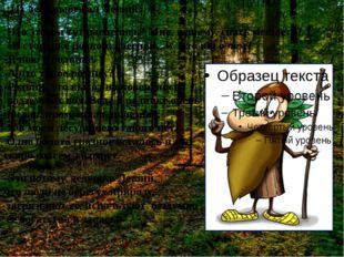 Из леса выбежал Леший: Что это вы тут распелись? Мне, лешему, спать мешаете?