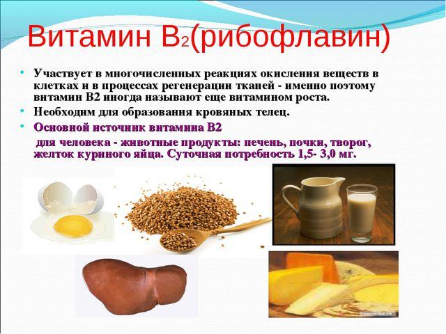 Витамин В2(рибофлавин) Участвует в многочисленных реакциях окисления веществ...
