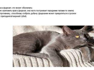 Когда кошка фыркает, это может обозначать: 1. Желание ошеломить врага (фыркая