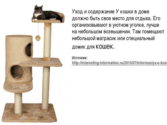 Уход и содержание У кошки в доме должно быть свое место для отдыха. Его орган...