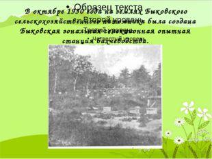 В октябре 1930 года на землях Быковского сельскохозяйственного питомника был