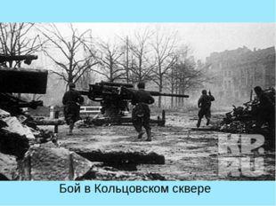 Бой в Кольцовском сквере