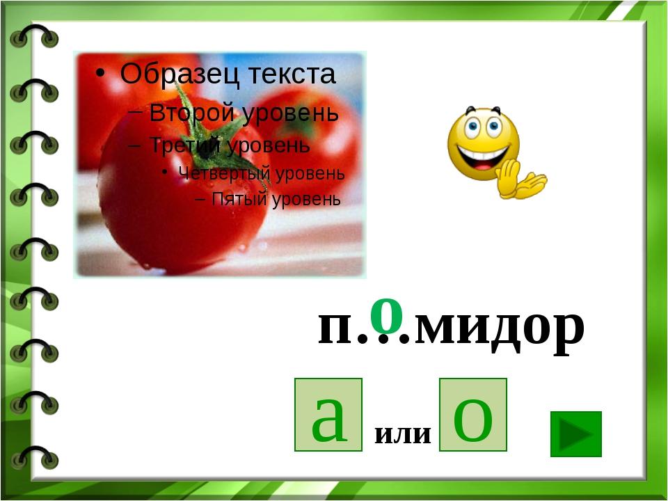 п…мидор а о или о