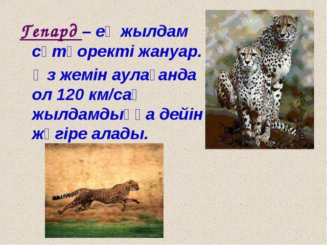 Гепард – ең жылдам сүтқоректі жануар. Өз жемін аулағанда ол 120 км/сағ жылдам...