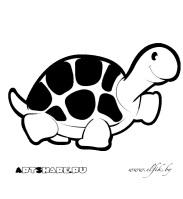 http://blog.elfik.by/wp-content/gallery/raskraski/tortoise.jpg