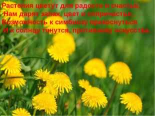 Растения цветут для радости и счастья, Нам дарят запах, цвет и сопричастье, В