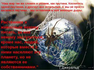 """""""Наш мир так же сложен и уязвим, как паутина. Коснитесь одной паутинки, и дро"""