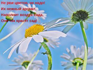 Не рви цветов, не надо! Их нежный аромат, Наполнит воздух сада, Они так крася