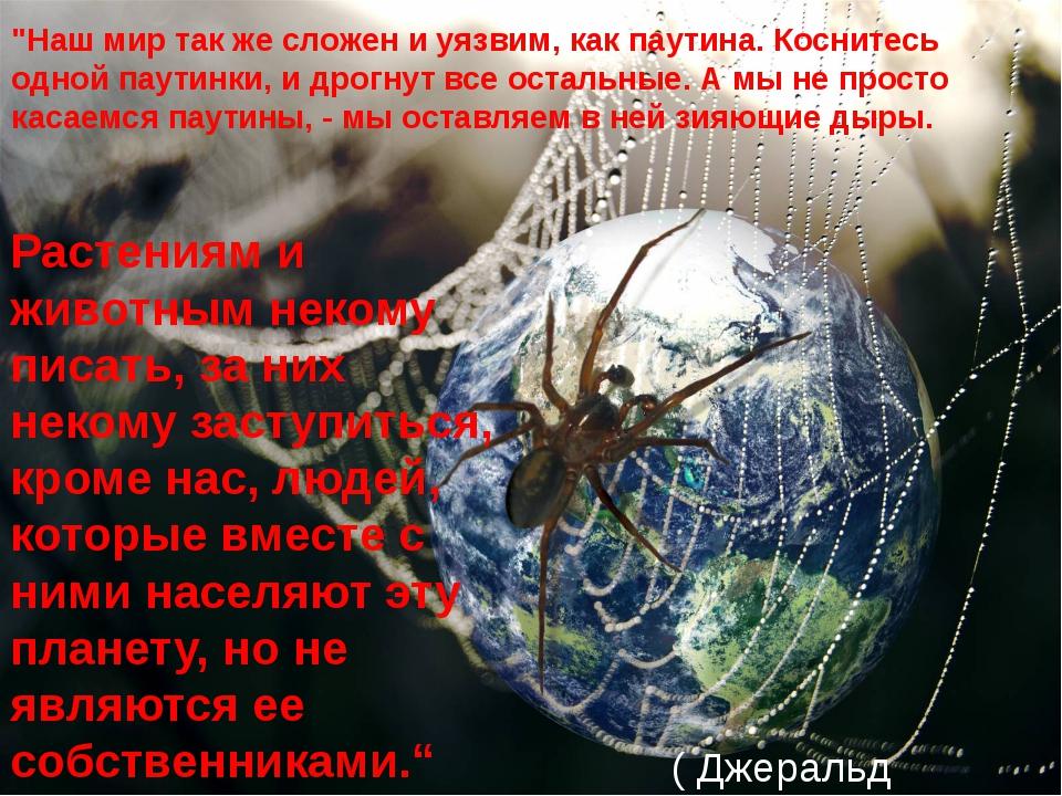 """""""Наш мир так же сложен и уязвим, как паутина. Коснитесь одной паутинки, и дро..."""