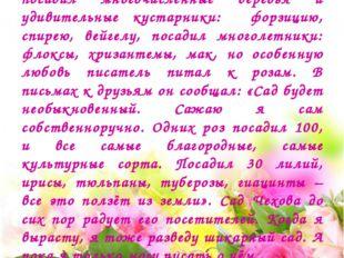 Все, кто восхищается писательским талантом Антона Павловича Чехова, знают пр