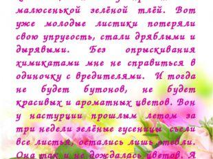 И тут вдруг роза стала жаловаться: - Я такая сильная, я такая колючая, а не