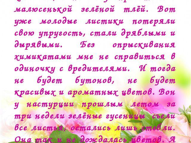 И тут вдруг роза стала жаловаться: - Я такая сильная, я такая колючая, а не...