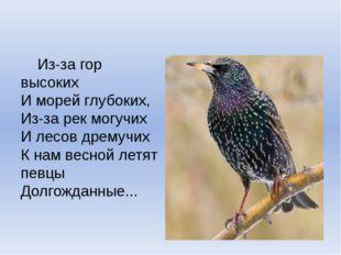 Из-за гор высоких И морей глубоких, Из-за рек могучих И лесов дремучих К
